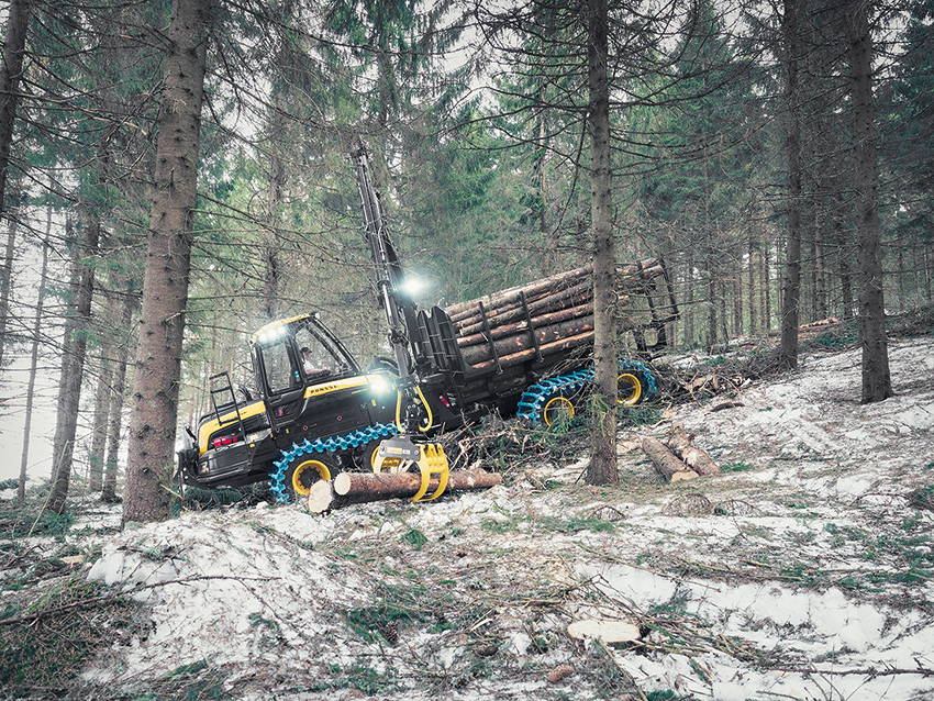 Kurier Drzewny
